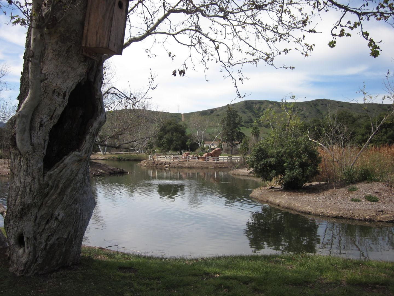 Santee Lakes7