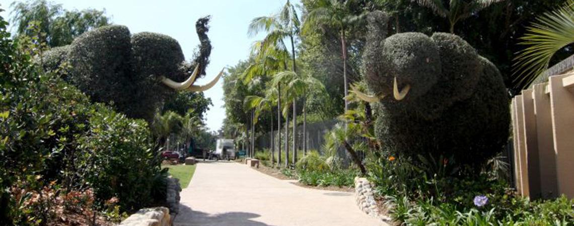 Zoo Centennial Walk