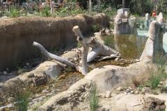 Elephant-Odyssey4