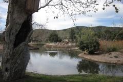 Santee-Lakes7